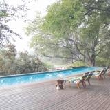 Bush-pool